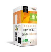 Dayang Oranger Bio 20 Infusettes à Pradines