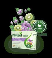 Phytoxil Transit Comprimés B/20 à Pradines
