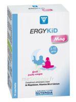 Ergykid Mag Poudre Solution Buvable 14 Sachets à Pradines