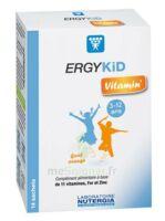 Ergykid Vitamin' Poudre Solution Buvable 14 Sachets à Pradines