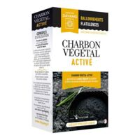 Dayang Charbon Végétal Activé 45 Gélules à Pradines