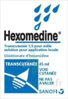 Hexomedine Transcutanee 1,5 Pour Mille, Solution Pour Application Locale à Pradines