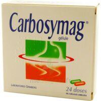 Carbosymag Gél 2plq/12+12 à Pradines