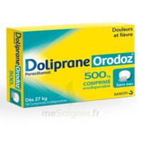 Dolipraneorodoz 500 Mg, Comprimé Orodispersible à Pradines