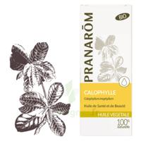Pranarom Huile Végétale Bio Calophylle 50ml à Pradines