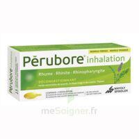 Perubore Caps Inhalation Par Vapeur Inhalation Plq/15 à Pradines
