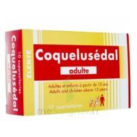 Coquelusedal Adultes, Suppositoire à Pradines