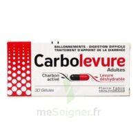 Carbolevure Gélules Adulte Plq/30 à Pradines