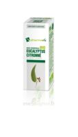 Huile Essentielle Bio Eucalyptus Citronné à Pradines