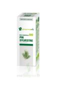 Huile Essentielle Bio Pin Sylvestre à Pradines