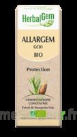 Allargem Solution Buvable Bio 30ml à Pradines