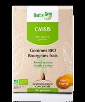 Herbalgem Gomme Cassis Bio B/24 à Pradines