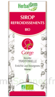 Herbalgem Sirop Bio Refroidissement 150ml à Pradines