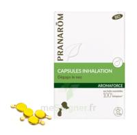 Aromaforce Caps Inhalation Bio B/15 + Inhalateur à Pradines