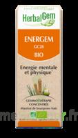 Herbalgem Energem Solution Buvable Bio Fl Cpte-gttes/30ml à Pradines