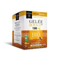 Dayang Gelée Royale 1500 Mg Bio 20 Ampoules à Pradines