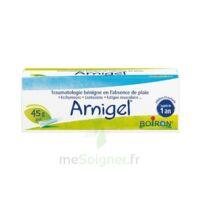 Boiron Arnigel Gel T(alumino-plastique)/45g à Pradines