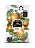 Dayang Oui Tea Cannelle Orange Bio 20 Infusettes à Pradines