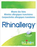 Boiron Rhinallergy Comprimés B/40 à Pradines