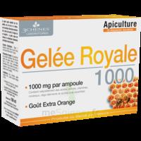 3 Chenes Phytotherapie Familiale Solution Buvable Gelée Royale 1000 10 Ampoules/10ml à Pradines