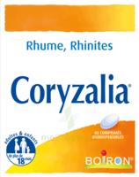 Boiron Coryzalia Comprimés Orodispersibles à Pradines