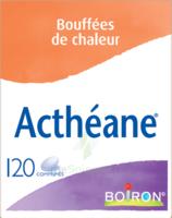 Boiron Acthéane Comprimés B/120 à Pradines